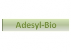 Adesyl Bio White UV